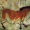 Revoluce ve vědě: divoký kůň vypadal úplně jinak, zjistily genetické výzkumy
