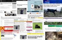 Pratuři z Milovic zaujali New York Times, Washington Post i média v Kanadě, Mexiku, Švýcarsku a na Novém Zélandu