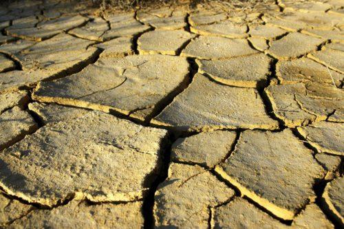 sucho, vyschlá přehrada, vyschlý rybník, vysychání krajiny