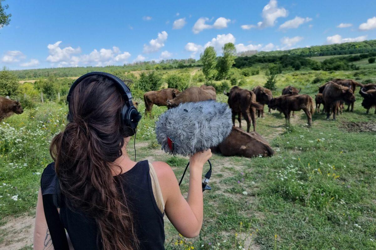 Zvuky přírody v rezervaci velkých kopytníků dnes nahrávali umělci v rámci mezinárodního projektu