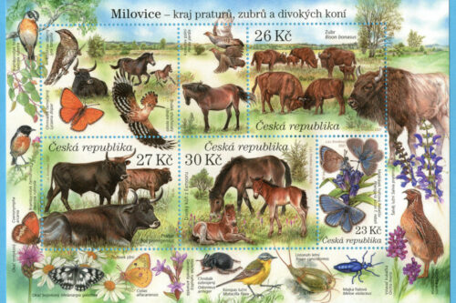 Rezervace divokých koní, zubrů a praturů se stala námětem aršíku pro sběratele známek, vyjde zítra